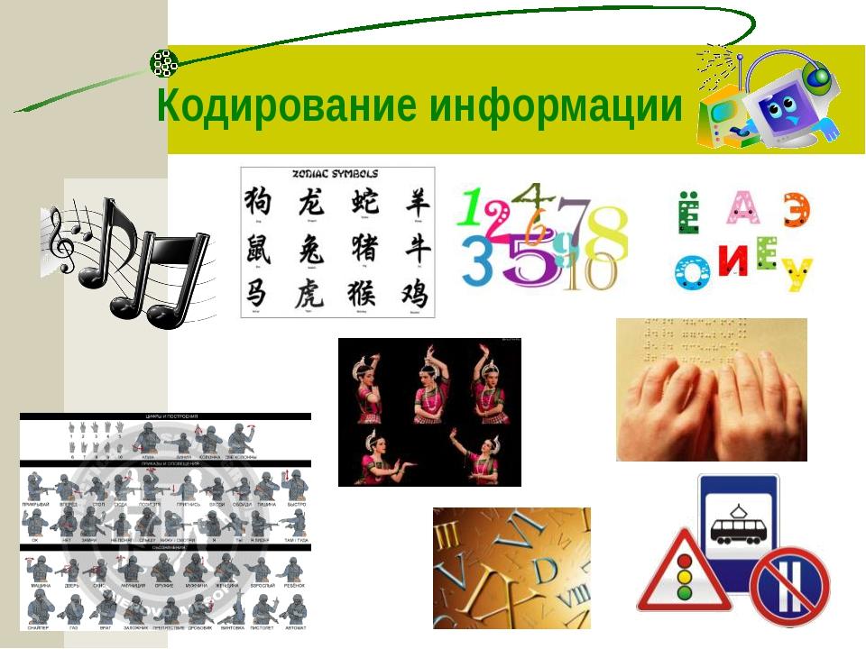 kartinki-zhirnaya-zhopa