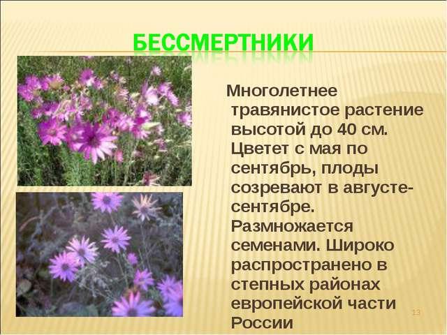 Многолетнее травянистое растение высотой до 40 см. Цветет с мая по сентябрь,...