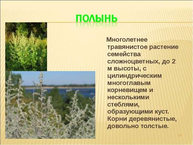 Многолетнее травянистое растение семейства сложноцветных, до 2 м высоты, с ц...