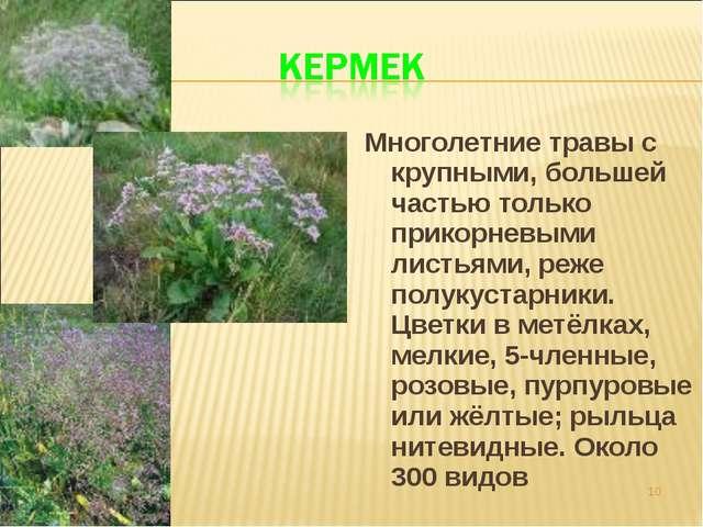 Многолетние травы с крупными, большей частью только прикорневыми листьями, ре...