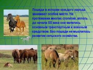 * Лошади в истории каждого народа занимают особое место. На протяжении многих