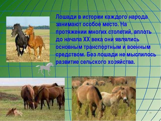 * Лошади в истории каждого народа занимают особое место. На протяжении многих...