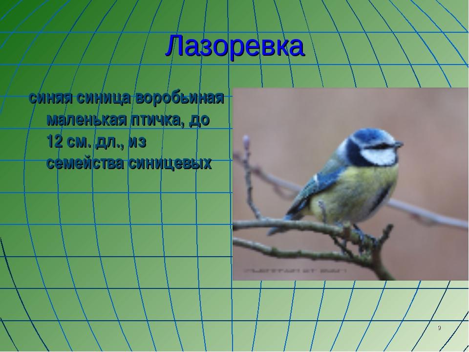 * Лазоревка синяя синица воробьиная маленькая птичка, до 12 см. дл., из семей...