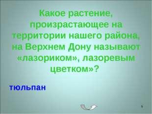 * Какое растение, произрастающее на территории нашего района, на Верхнем Дону