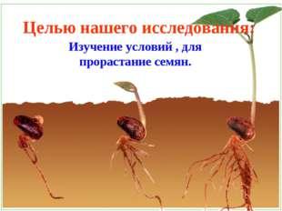 Целью нашего исследования: Изучение условий , для прорастание семян.