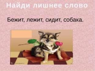 Бежит, лежит, сидит, собака. Найди лишнее слово