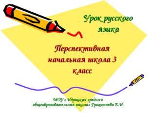 Урок русского языка МОУ « Идрицкая средняя общеобразовательная школа» Грохотн