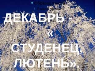 ДЕКАБРЬ - « СТУДЕНЕЦ, ЛЮТЕНЬ».
