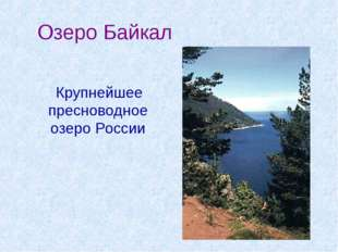 Озеро Байкал Крупнейшее пресноводное озеро России