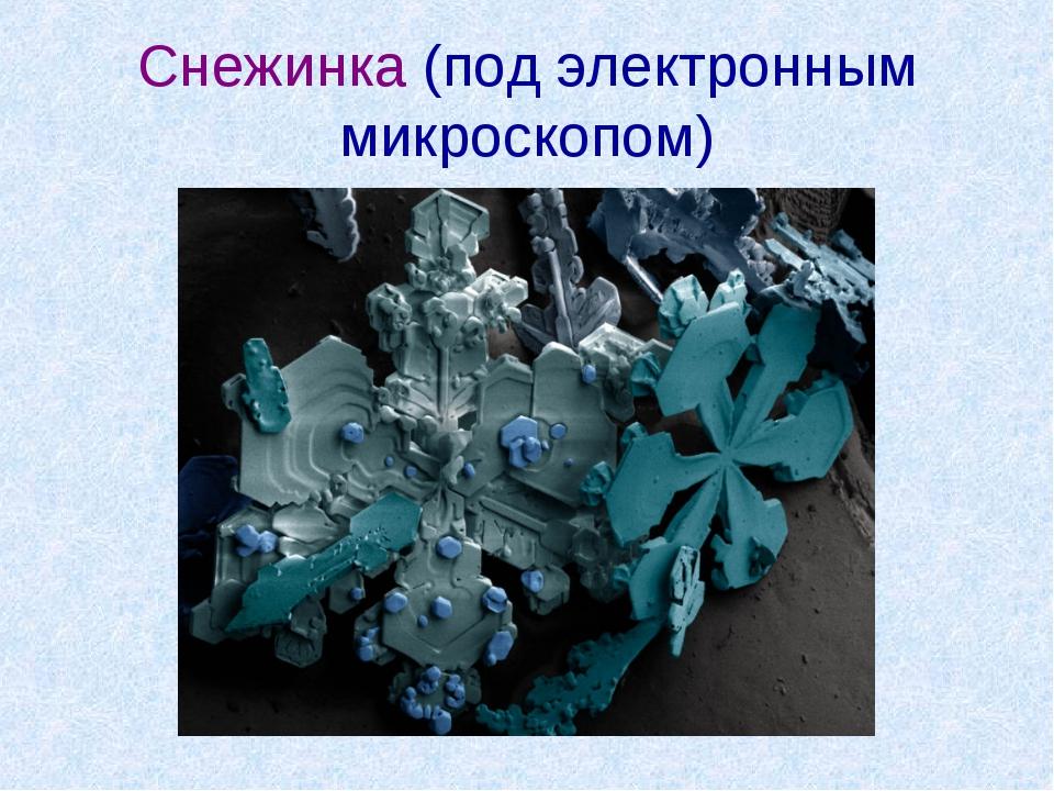 Снежинка (под электронным микроскопом)