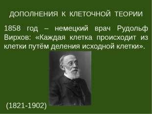 ДОПОЛНЕНИЯ К КЛЕТОЧНОЙ ТЕОРИИ 1858 год – немецкий врач Рудольф Вирхов: «Кажда