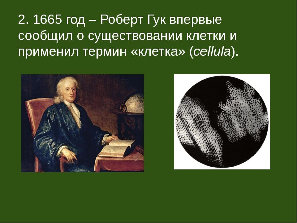 2. 1665 год – Роберт Гук впервые сообщил о существовании клетки и применил те...