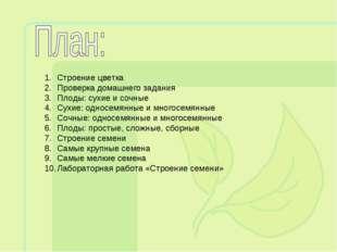 Строение цветка Проверка домашнего задания Плоды: сухие и сочные Сухие: однос