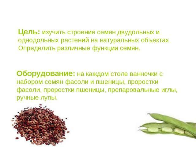 Цель: изучить строение семян двудольных и однодольных растений на натуральных...