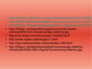 http://luckytour.kharkov.ua/wp-content/uploads/2012/12/wpid-50bb9a888e337.jpg