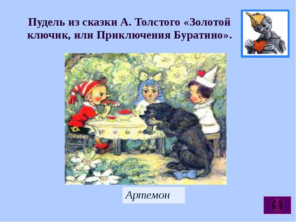 Пудель из сказки А. Толстого «Золотой ключик, или Приключения Буратино». Арте...