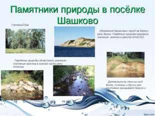 Памятники природы в посёлке Шашково Сосновый бор Памятник природы областного