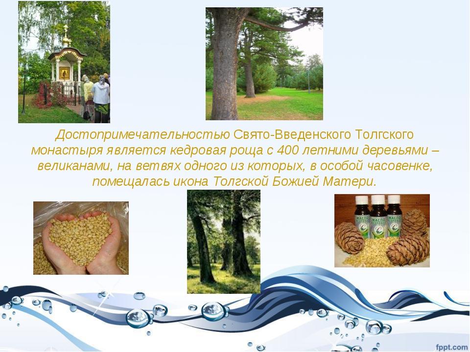 Достопримечательностью Свято-Введенского Толгского монастыря является кедрова...