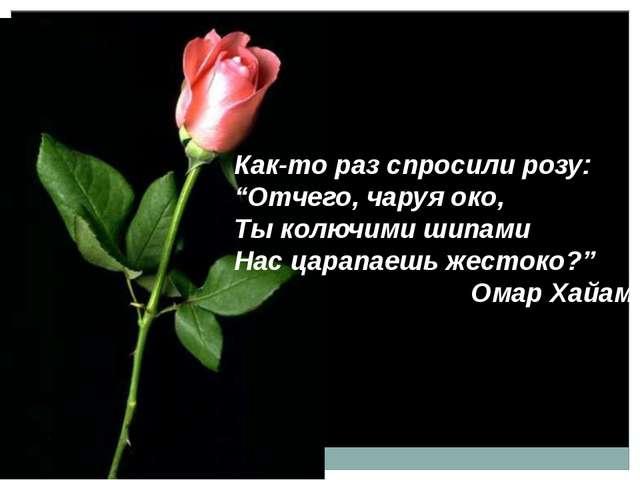 "Как-то раз спросили розу: ""Отчего, чаруя око, Ты колючими шипами Нас царапаеш..."