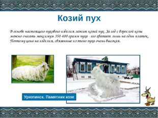 Источники информации http://www.platok56.ru/page.htm?announcementGid=240&anno