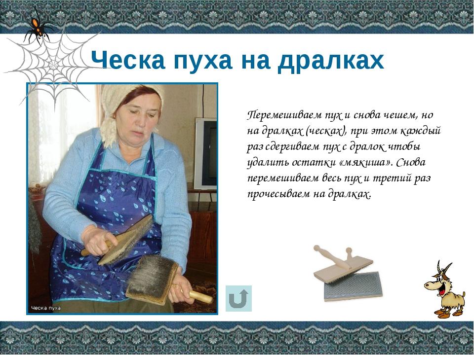 Поднятый П. И. Рычковым вопрос о применении козьей шерсти для производства пу...