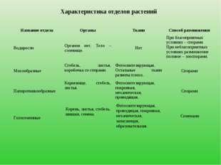 Характеристика отделов растений Корень, листья, стебель, шишки, семена. Фотос