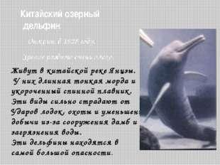 Охрана китообразных Численность сократилась из-за интенсивного промысла. Мног