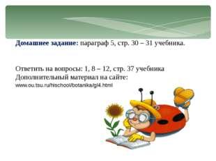 Домашнее задание: параграф 5, стр. 30 – 31 учебника. Ответить на вопросы: 1,