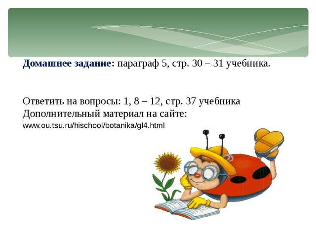 Домашнее задание: параграф 5, стр. 30 – 31 учебника. Ответить на вопросы: 1,...