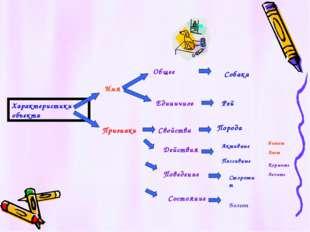 Характеристики объекта Имя Общее Единичное Признаки Свойства Действия Поведен