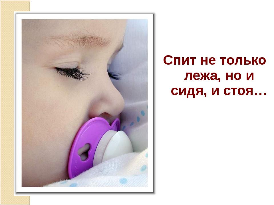 Спит не только лежа, но и сидя, и стоя…