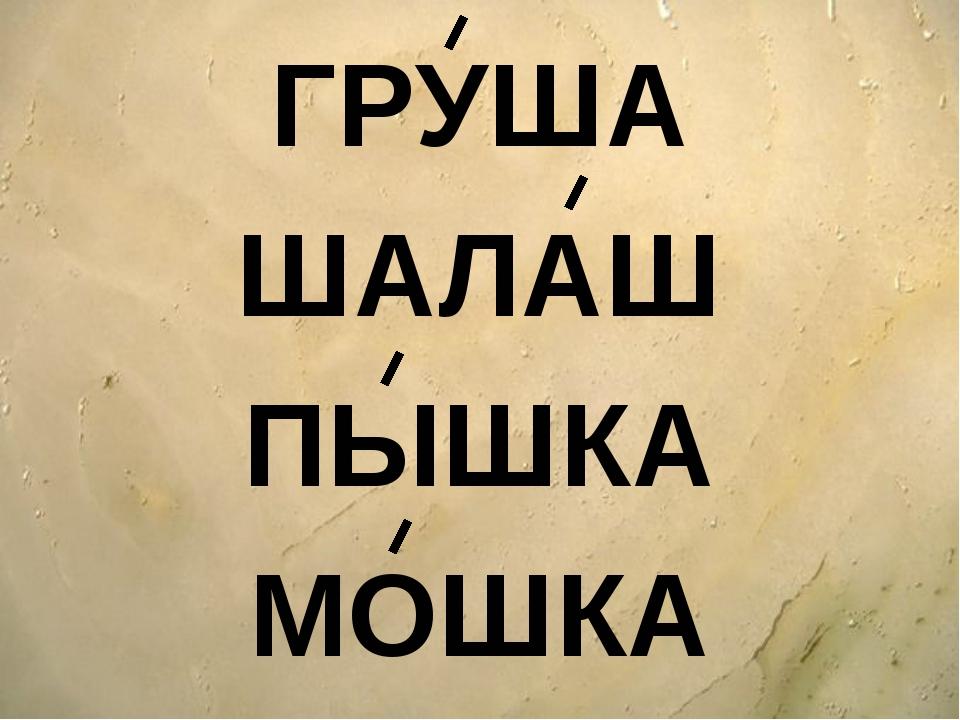 ГРУША ШАЛАШ ПЫШКА МОШКА