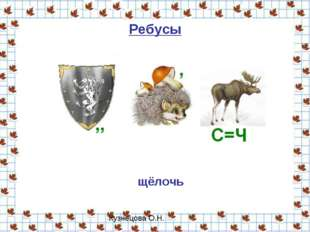 Ребусы щёлочь Кузнецова О.Н.