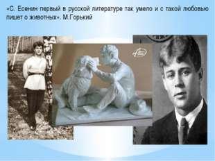 «С. Есенин первый в русской литературе так умело и с такой любовью пишет о жи