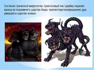 Согласно греческой мифологии, трехголовый пес Цербер охранял выход из подземн