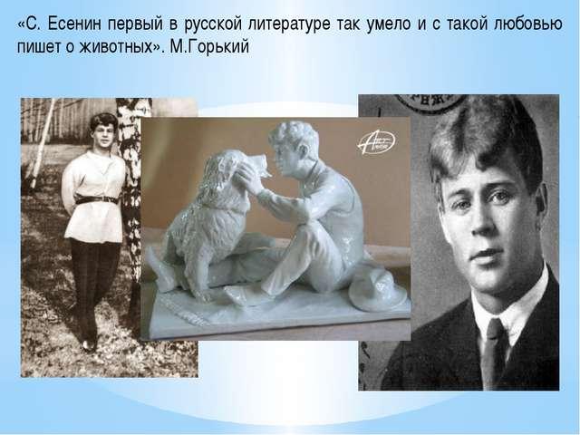 «С. Есенин первый в русской литературе так умело и с такой любовью пишет о жи...
