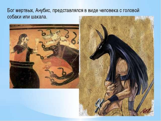 Бог мертвых, Анубис, представлялся в виде человека с головой собаки или шакала.