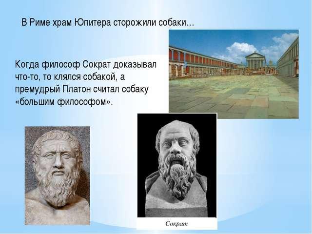 В Риме храм Юпитера сторожили собаки… Когда философ Сократ доказывал что-то,...