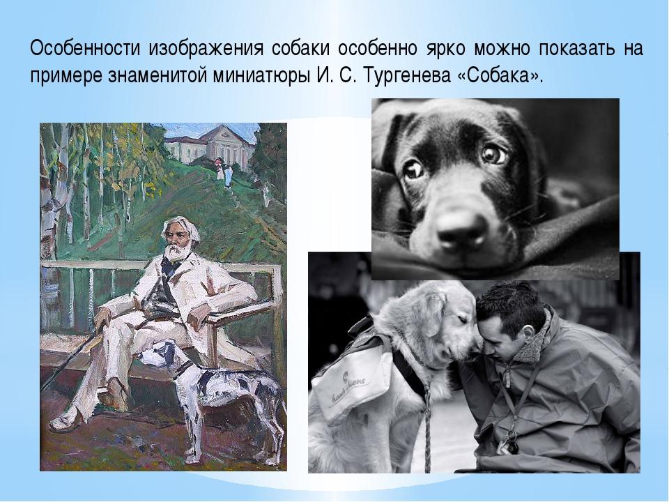 Особенности изображения собаки особенно ярко можно показать на примере знамен...