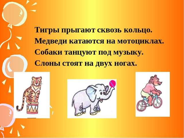 Тигры прыгают сквозь кольцо. Медведи катаются на мотоциклах. Собаки танцуют п...