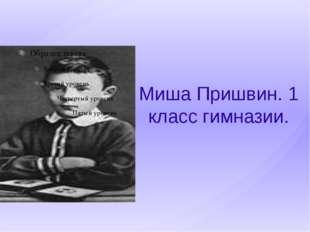 Миша Пришвин. 1 класс гимназии.