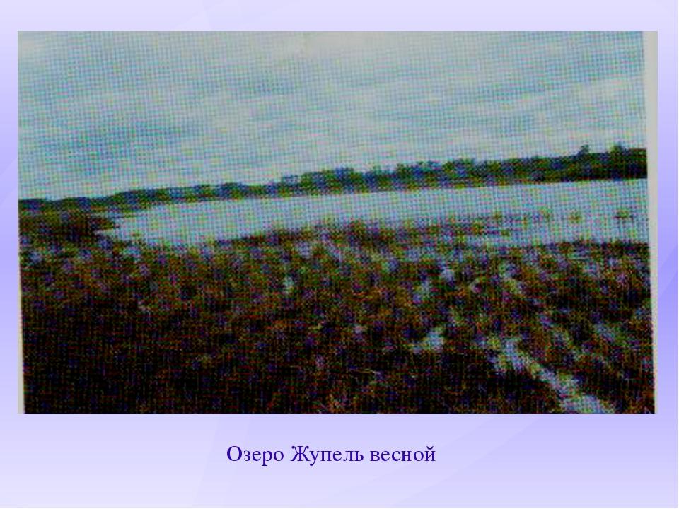 Озеро Жупель весной