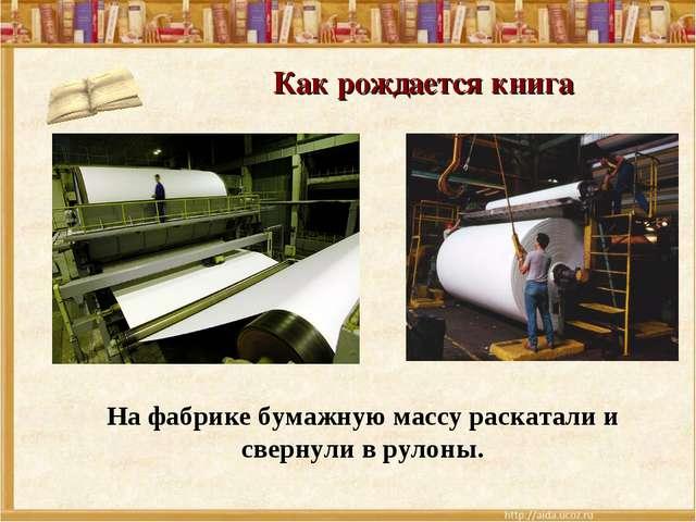 Как рождается книга На фабрике бумажную массу раскатали и свернули в рулоны.