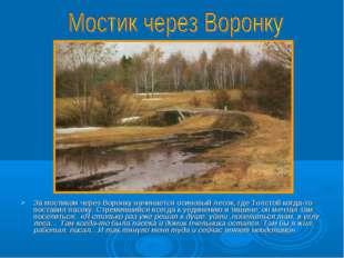 За мостиком через Воронку начинается осиновый лесок, где Толстой когда-то пос