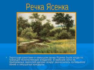 Заросшая ракитами и камышом речка Ясенка была когда-то границей яснополянских