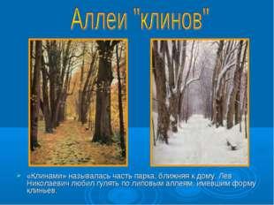 «Клинами» называлась часть парка, ближняя к дому. Лев Николаевич любил гулят