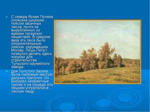 С севера Ясная Поляна опоясана широким поясом засечных лесов, почти не выруб