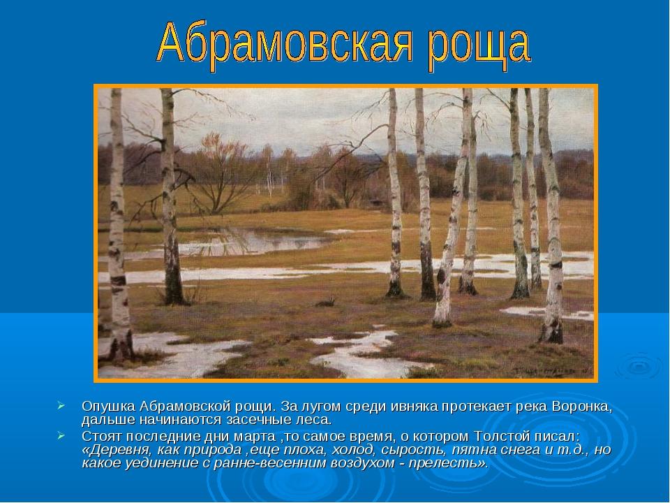 Опушка Абрамовской рощи. За лугом среди ивняка протекает река Воронка, дальше...