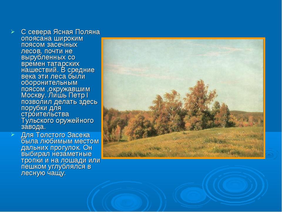 С севера Ясная Поляна опоясана широким поясом засечных лесов, почти не выруб...