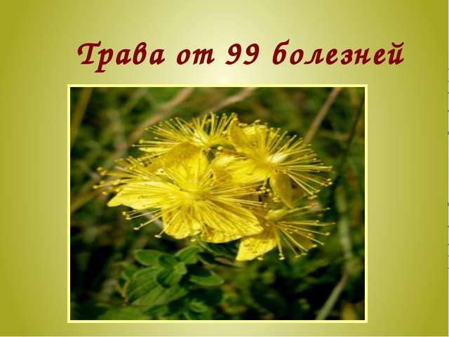 Трава от 99 болезней